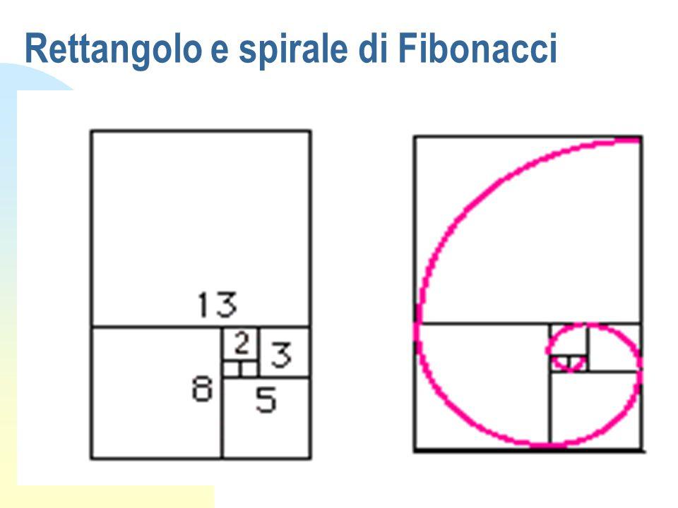 Esempio naturale: il NAUTILUS Rispetta le proporzioni della spirale logaritmica