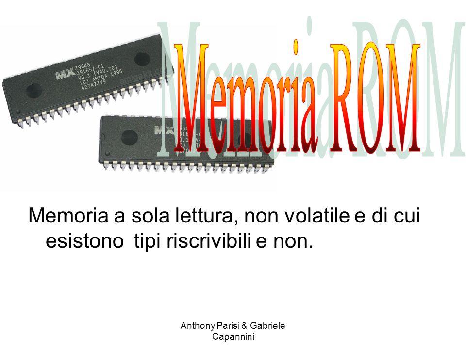 Memoria a sola lettura, non volatile e di cui esistono tipi riscrivibili e non. Anthony Parisi & Gabriele Capannini