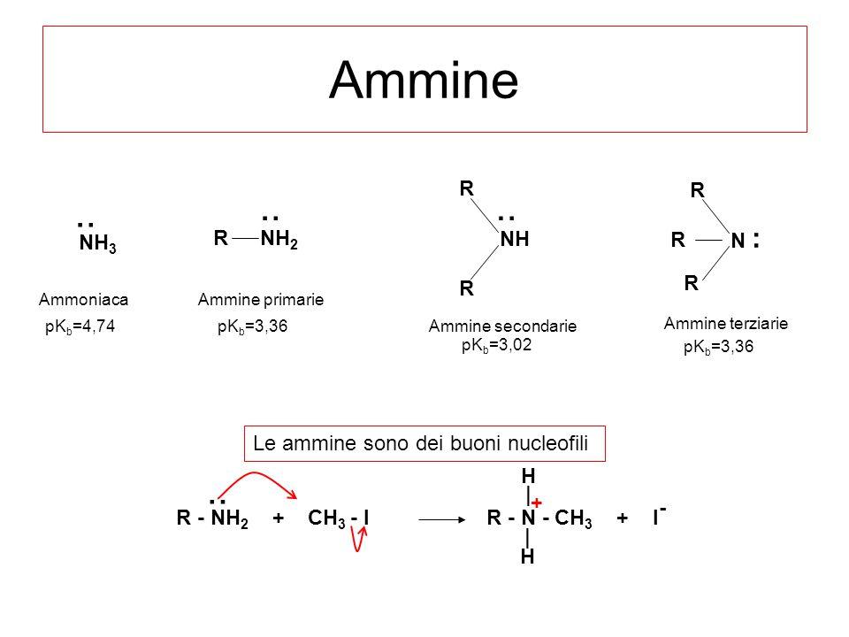 Ammine N : R R R NH R R NH 2 R Ammine primarie Ammine secondarie Ammine terziarie :: R - NH 2 + CH 3 - I R - N - CH 3 + I - : |H|H H|H| + pK b =3,36 p
