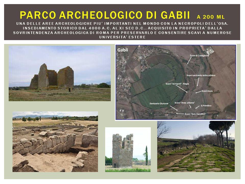 PARCO ARCHEOLOGICO DI GABII A 200 ML UNA DELLE AREE ARCHEOLOGICHE PIU' IMPORTANTI NEL MONDO CON LA NECROPOLI DELL'OSA. INSEDIAMENTO STORICO DAL 4000 A