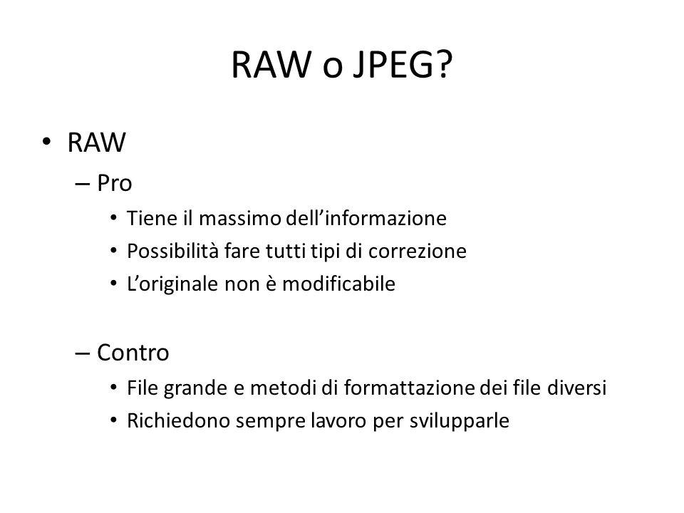 RAW o JPEG.