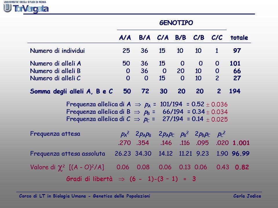 GENOTIPO A/AB/AC/AB/BC/BC/C totale Numero di individui 25 36 15 10 10 1 97 Numero di alleli A 50 36 15 0 0 0101 Numero di alleli B 0 36 0 20 10 0 66 N