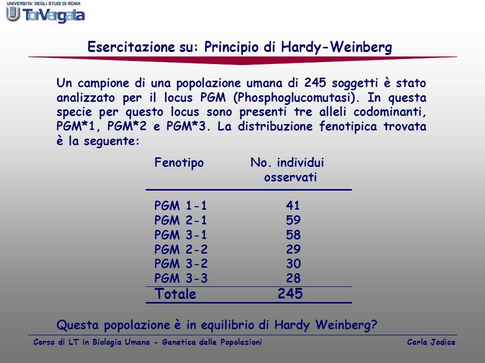 Un campione di una popolazione umana di 245 soggetti è stato analizzato per il locus PGM (Phosphoglucomutasi). In questa specie per questo locus sono