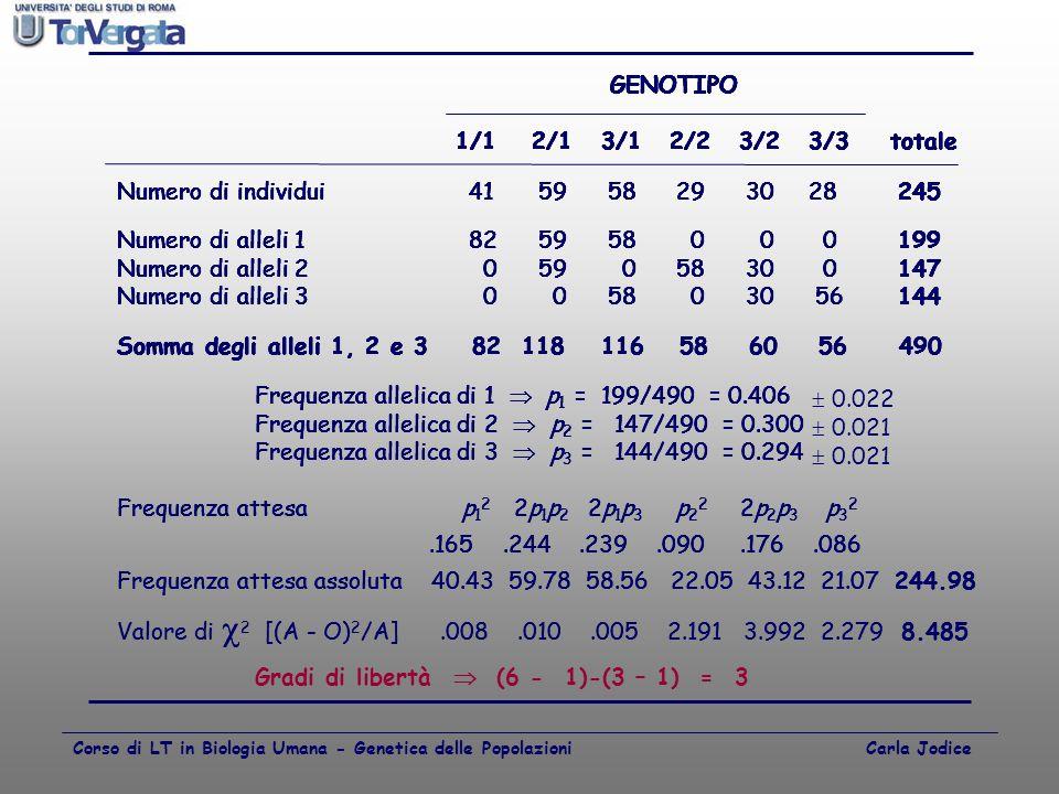 GENOTIPO 1/12/13/12/23/23/3 totale Numero di individui 41 59 58 29 3028 245 Numero di alleli 1 82 59 58 0 0 0 199 Numero di alleli 2 0 59 0 58 30 0 14