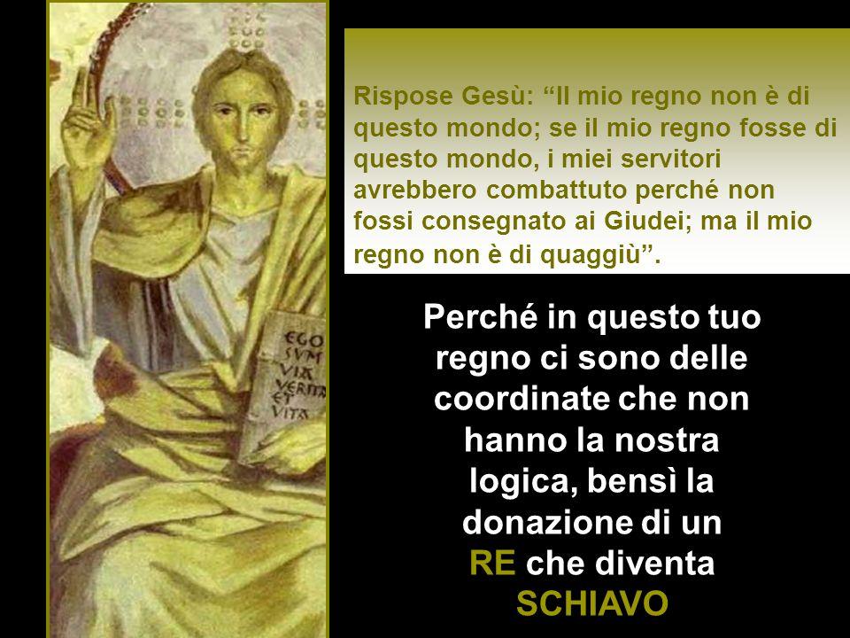 Pilato rispose: Sono io forse Giudeo.