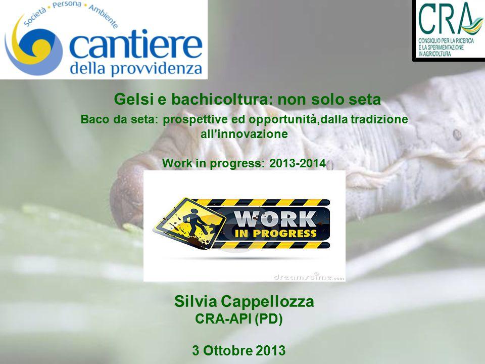 Silvia Cappellozza CRA-API (PD) 3 Ottobre 2013 Gelsi e bachicoltura: non solo seta Baco da seta: prospettive ed opportunità,dalla tradizione all innovazione Work in progress: 2013-2014