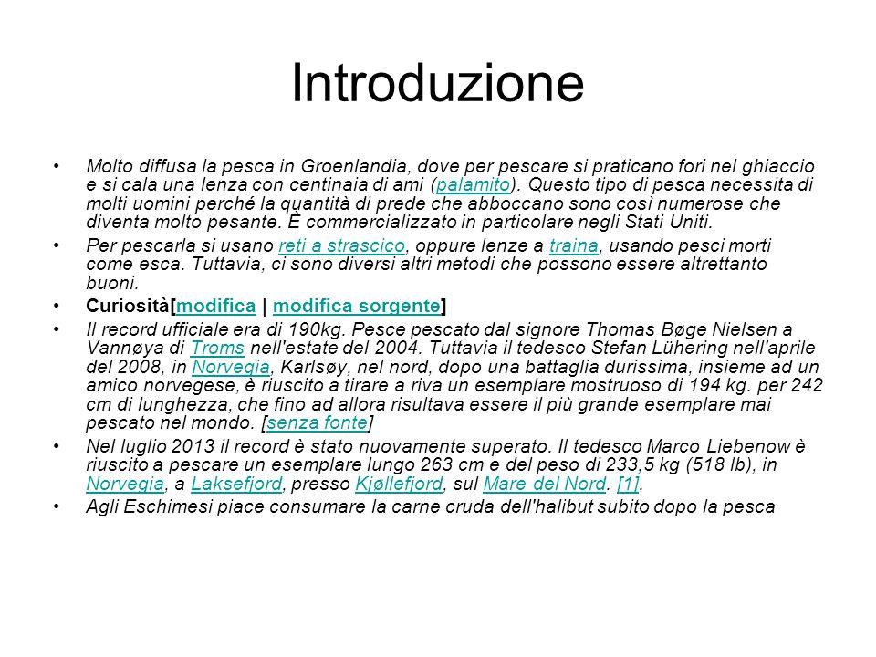 Consclusione Speriamo che la nostra presentazione vi sia piaciuta,grazie per l'attenzione Giuseppe Lionetti e Michele Porta