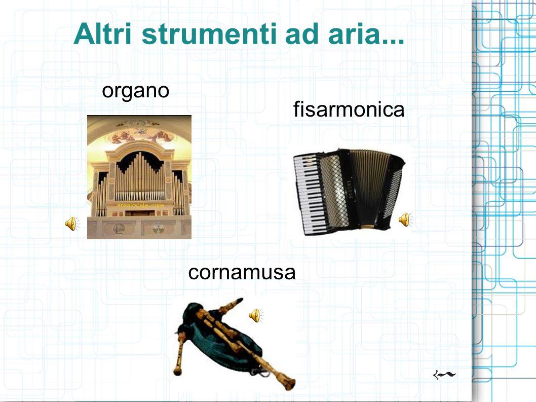 Altri strumenti ad aria... organo cornamusa fisarmonica