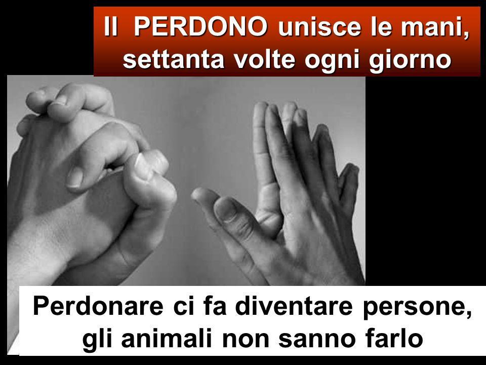 Il PERDONO unisce le mani, settanta volte ogni giorno Perdonare ci fa diventare persone, gli animali non sanno farlo