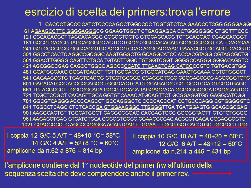 esrcizio di scelta dei primers:trova l'errore 1 CACCCTGCCC CATCTCCCCA GCCTGGCCCC TCGTGTCTCA GAACCCTCGG GGGGAGGCAC 61 AGAAGCCTTC GGGGAGGGCG GGAAGTGGCT