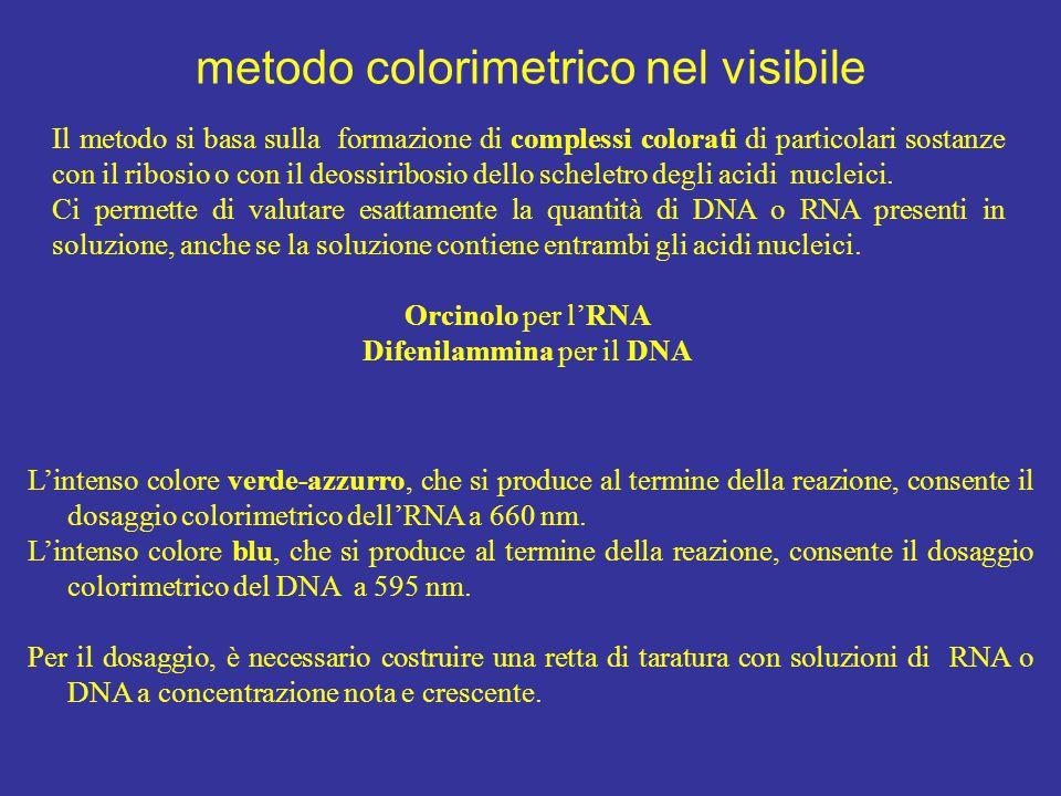 Il metodo si basa sulla formazione di complessi colorati di particolari sostanze con il ribosio o con il deossiribosio dello scheletro degli acidi nuc