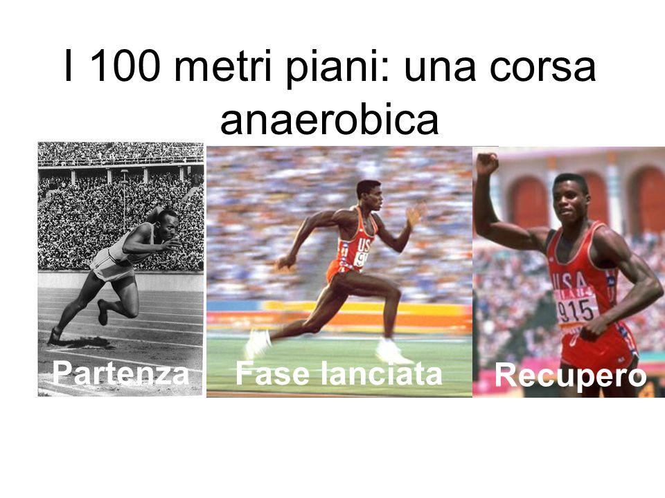 Partenza Fase lanciata Recupero I 100 metri piani: una corsa anaerobica