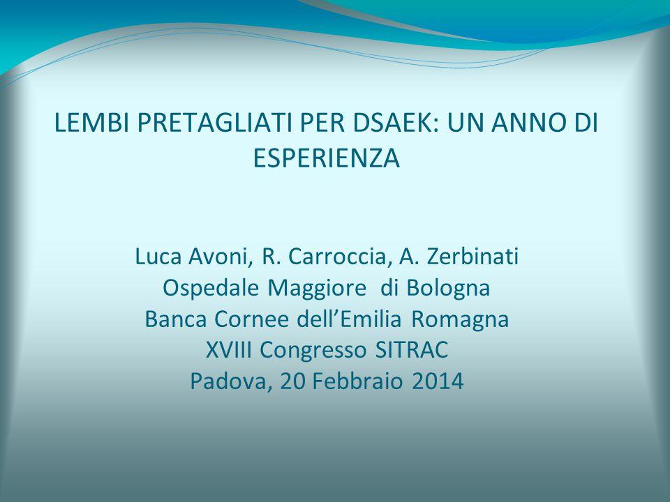 LEMBI PRETAGLIATI PER DSAEK: UN ANNO DI ESPERIENZA Luca Avoni, R.