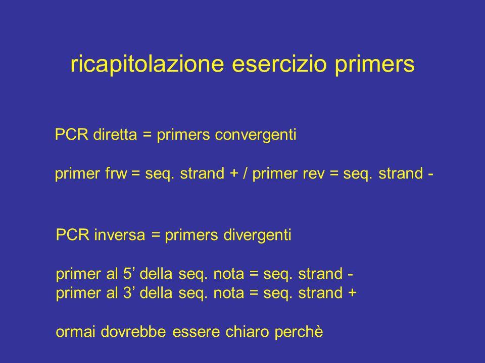 ricapitolazione esercizio primers PCR diretta = primers convergenti primer frw = seq.