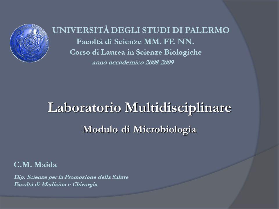 UNIVERSITÀ DEGLI STUDI DI PALERMO Corso di Laurea in Scienze Biologiche anno accademico 2008-2009 Laboratorio Multidisciplinare Modulo di Microbiologi