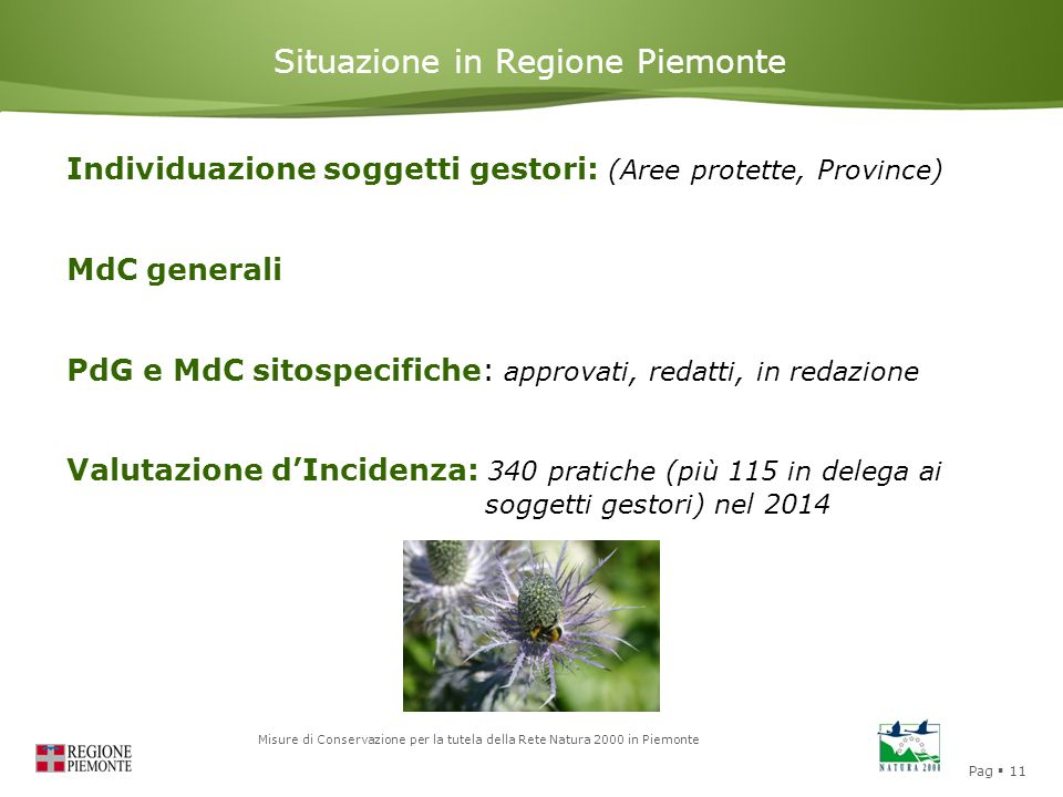 Pag  11 Misure di Conservazione per la tutela della Rete Natura 2000 in Piemonte Situazione in Regione Piemonte Individuazione soggetti gestori: (Are