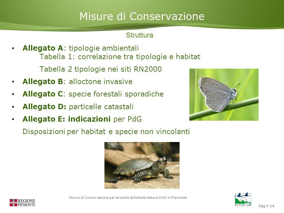 Pag  14 Misure di Conservazione per la tutela della Rete Natura 2000 in Piemonte Misure di Conservazione Struttura Allegato A: tipologie ambientali T