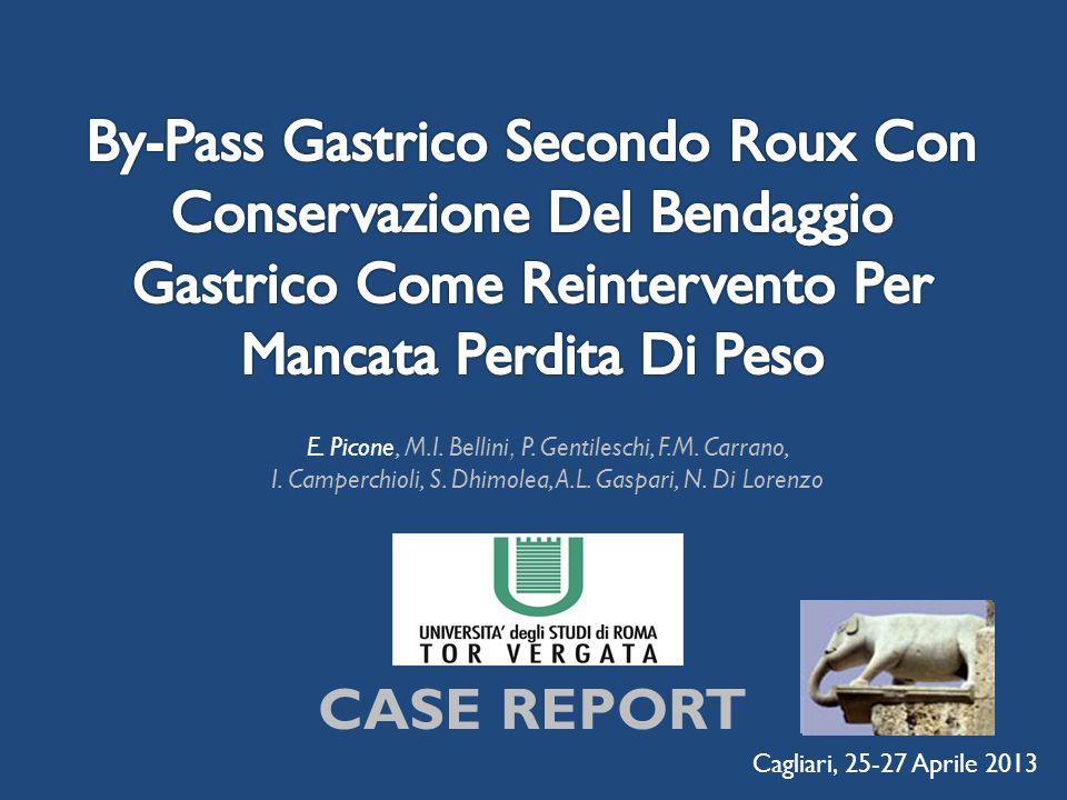 E. Picone, M.I. Bellini, P. Gentileschi, F.M. Carrano, I. Camperchioli, S. Dhimolea, A.L. Gaspari, N. Di Lorenzo Cagliari, 25-27 Aprile 2013