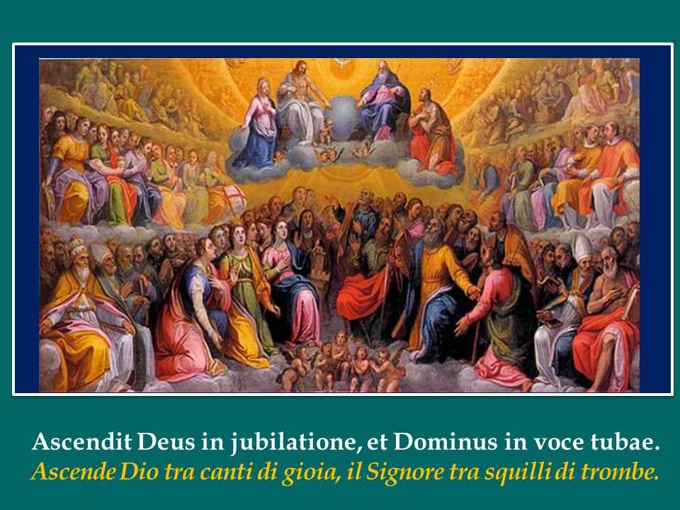 Oggi la Chiesa propone alla nostra venerazione una schiera di martiri, che furono chiamati insieme alla suprema testimonianza del Vangelo, nel 1480.