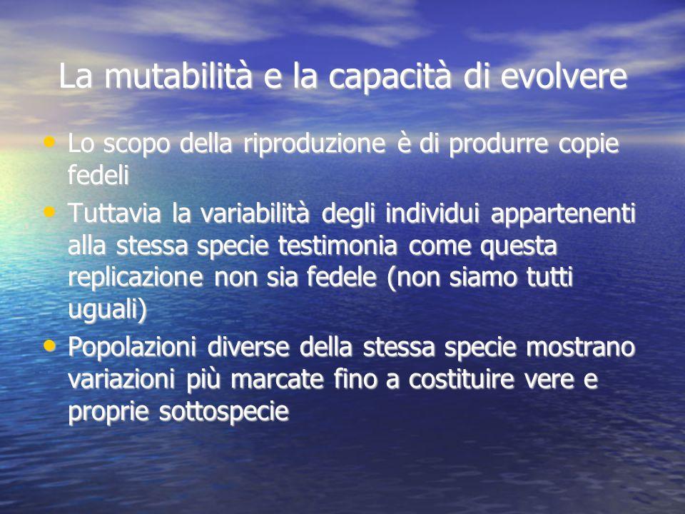 La mutabilità e la capacità di evolvere Lo scopo della riproduzione è di produrre copie fedeli Tuttavia la variabilità degli individui appartenenti al