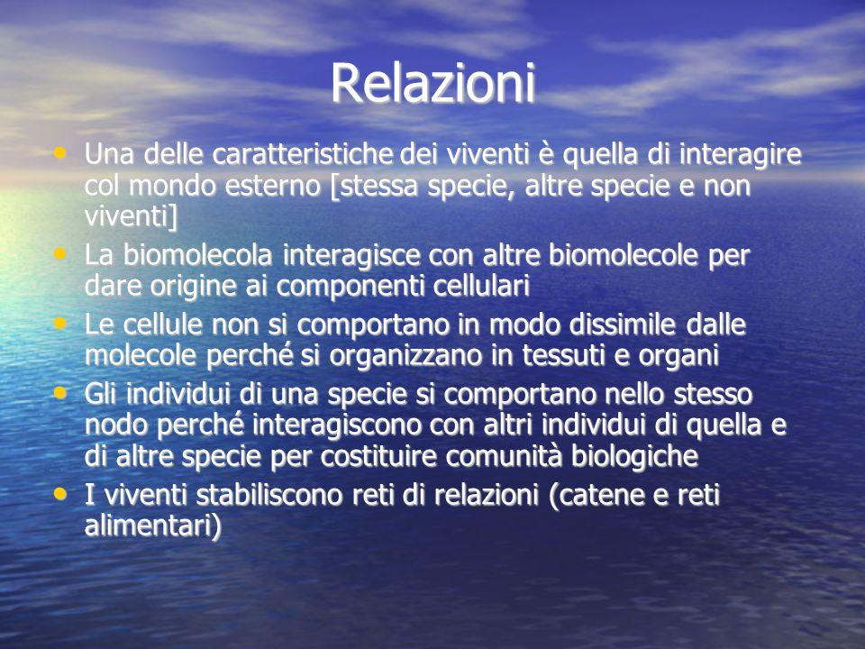 Relazioni Una delle caratteristiche dei viventi è quella di interagire col mondo esterno [stessa specie, altre specie e non viventi] La biomolecola in