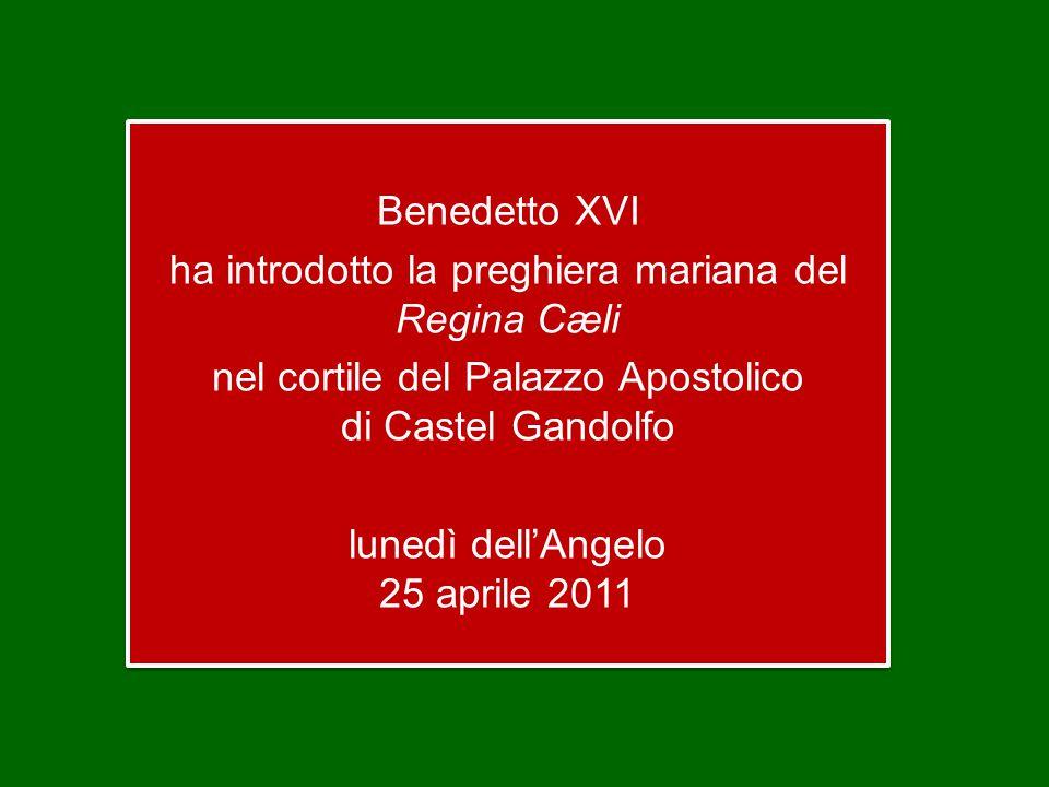 Lo leggiamo proprio oggi, Lunedì dell'Angelo, nel primo discorso missionario della Chiesa nascente: Questo Gesù – proclama l'apostolo Pietro – Dio lo ha risuscitato e noi tutti ne siamo testimoni.