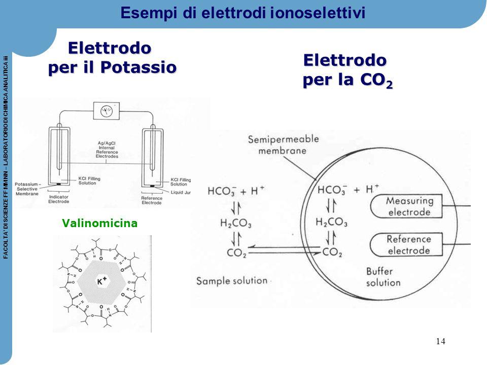 14 FACOLTA' DI SCIENZE FF MM NN – LABORATORIO DI CHIMICA ANALITICA iii Elettrodo per il Potassio Valinomicina Elettrodo per la CO 2 Esempi di elettrod