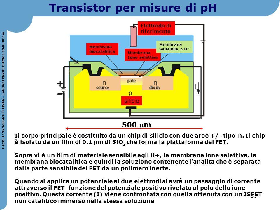 20 FACOLTA' DI SCIENZE FF MM NN – LABORATORIO DI CHIMICA ANALITICA iii Il corpo principale è costituito da un chip di silicio con due aree +/- tipo-n.