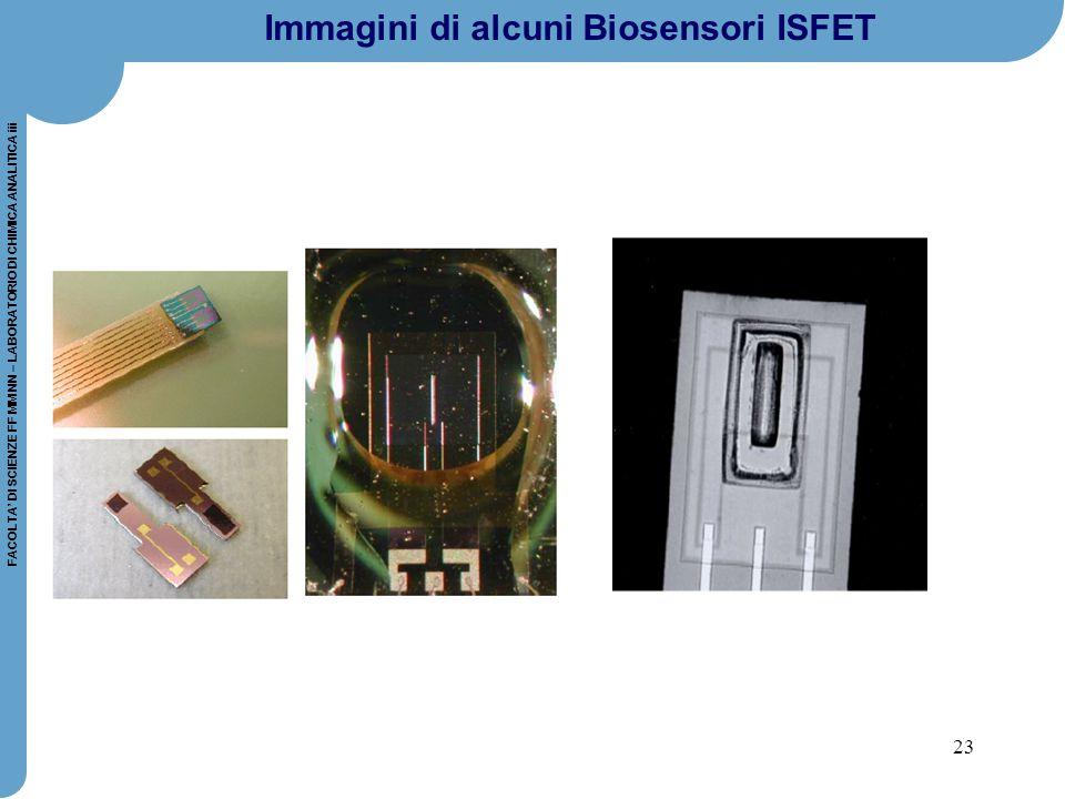 23 FACOLTA' DI SCIENZE FF MM NN – LABORATORIO DI CHIMICA ANALITICA iii Immagini di alcuni Biosensori ISFET