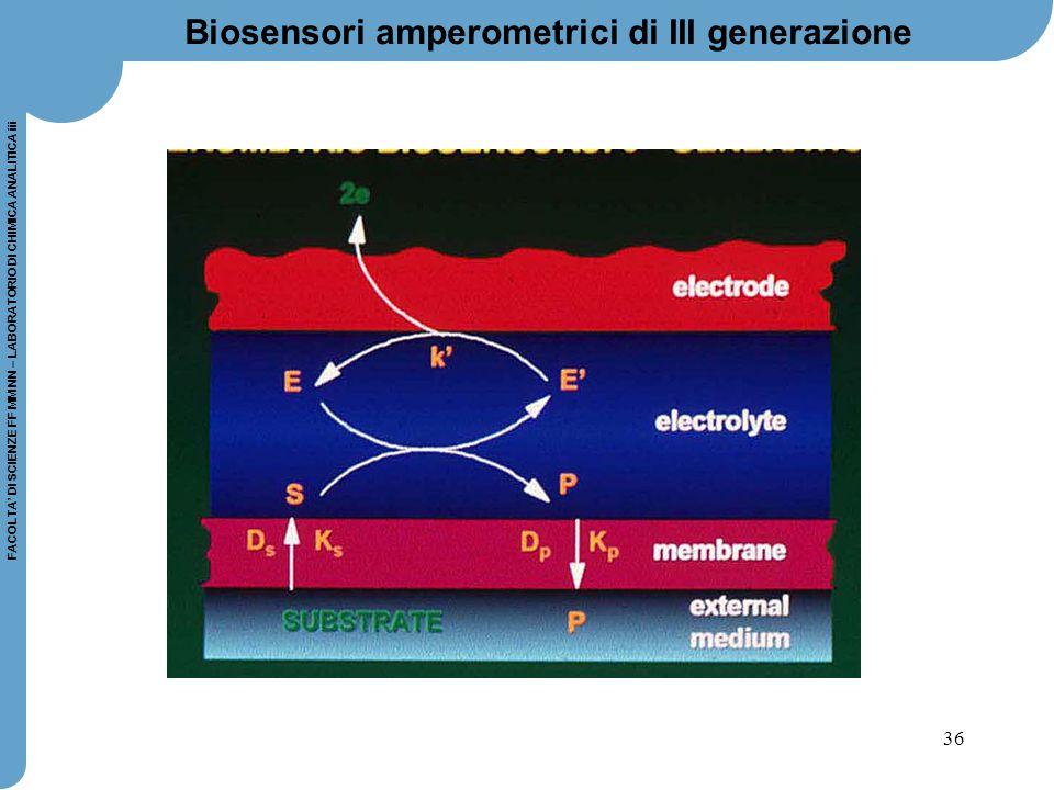 36 FACOLTA' DI SCIENZE FF MM NN – LABORATORIO DI CHIMICA ANALITICA iii Biosensori amperometrici di III generazione