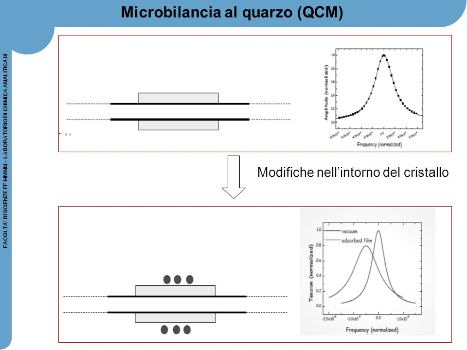 39 FACOLTA' DI SCIENZE FF MM NN – LABORATORIO DI CHIMICA ANALITICA iii Microbilancia al quarzo (QCM) Modifiche nell'intorno del cristallo