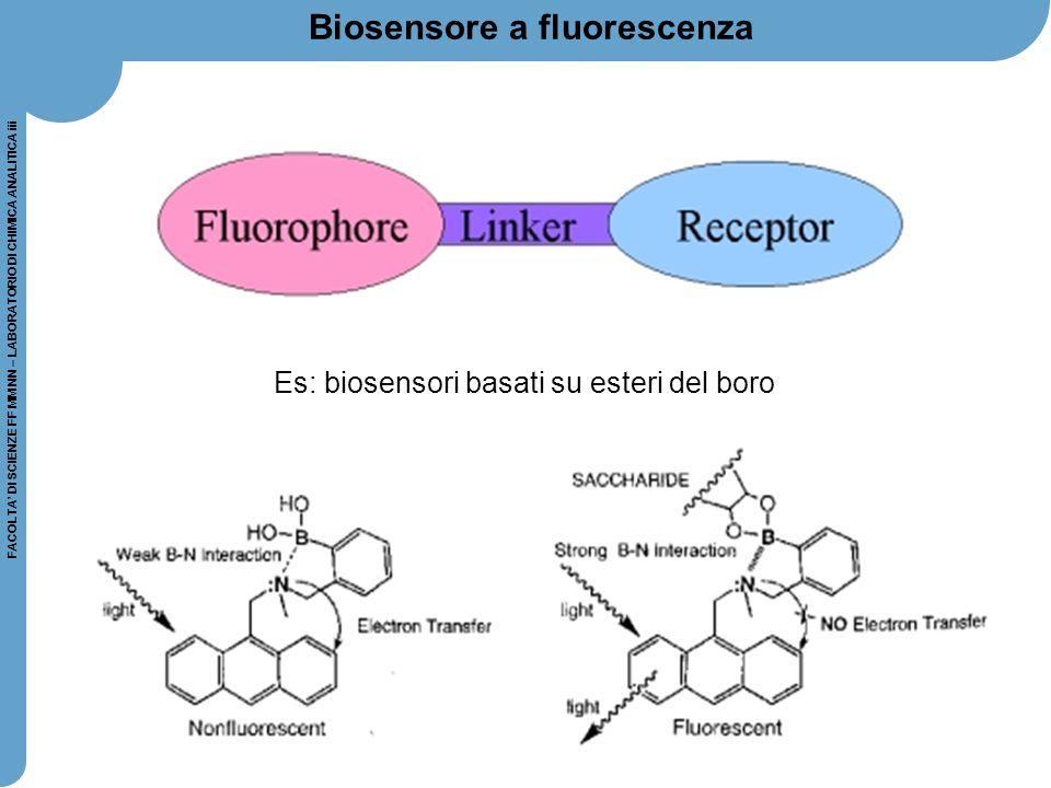 53 FACOLTA' DI SCIENZE FF MM NN – LABORATORIO DI CHIMICA ANALITICA iii Biosensore a fluorescenza Es: biosensori basati su esteri del boro