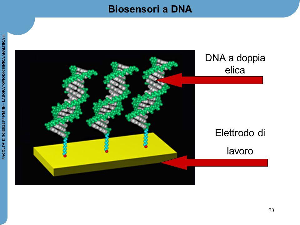 73 FACOLTA' DI SCIENZE FF MM NN – LABORATORIO DI CHIMICA ANALITICA iii Biosensori a DNA DNA a doppia elica Elettrodo di lavoro