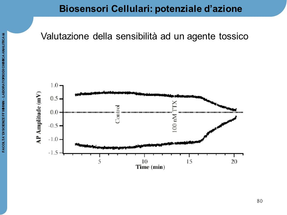 80 FACOLTA' DI SCIENZE FF MM NN – LABORATORIO DI CHIMICA ANALITICA iii Valutazione della sensibilità ad un agente tossico Biosensori Cellulari: potenz