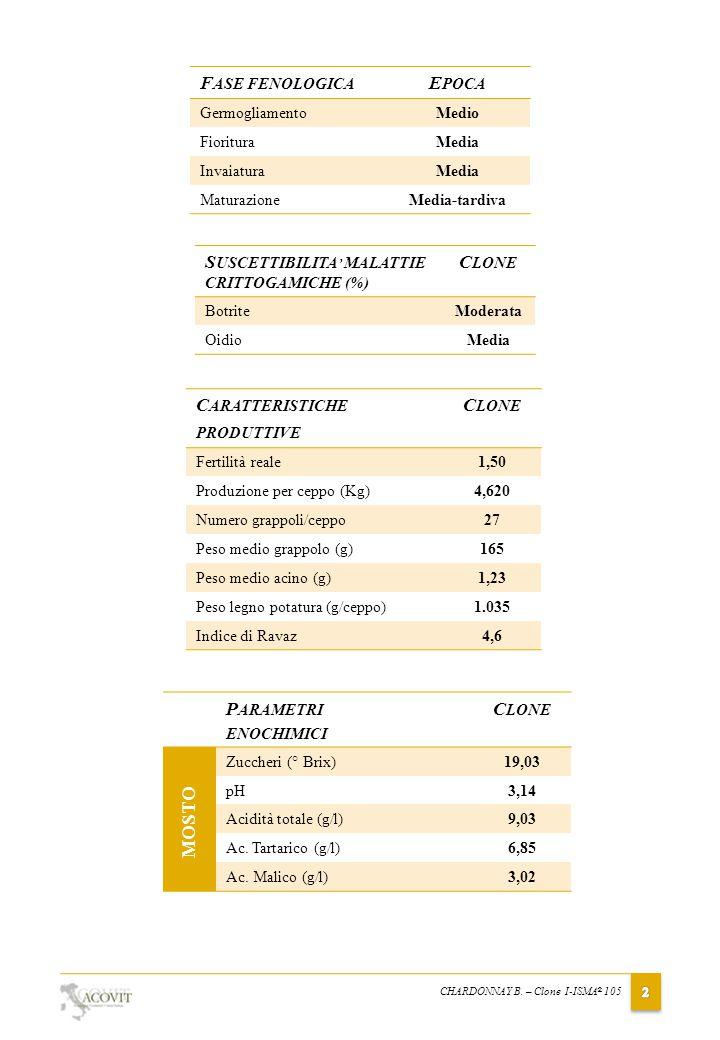 DESCRIZIONE ORGANOLETTICA ANALISI SENSORIALE Il vino ottenibile da Chardonnay ISMA ® 105 è gradevolmente fruttato; sostenuto da una discreta acidità, al gusto risulta sapido, con buona persistenza, idoneo sia per vino base spumante sia per vino tranquillo.