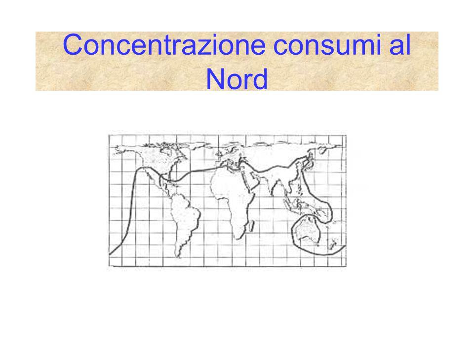 Concentrazione consumi al Nord