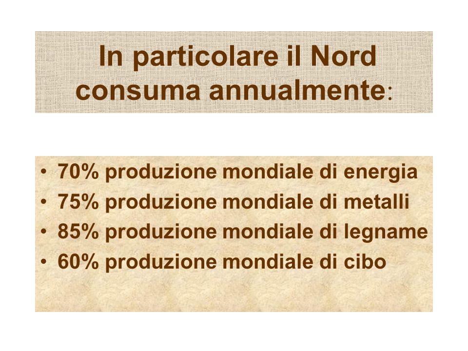 In particolare il Nord consuma annualmente : 70% produzione mondiale di energia 75% produzione mondiale di metalli 85% produzione mondiale di legname 60% produzione mondiale di cibo