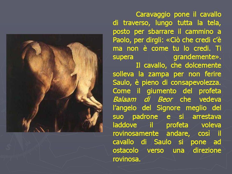Caravaggio pone il cavallo di traverso, lungo tutta la tela, posto per sbarrare il cammino a Paolo, per dirgli: «Ciò che credi c'è ma non è come tu lo credi.