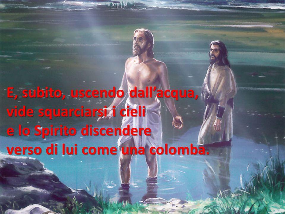 E, subito, uscendo dall'acqua, vide squarciarsi i cieli e lo Spirito discendere verso di lui come una colomba.