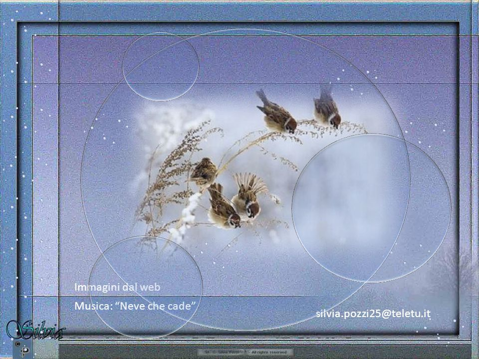silvia.pozzi25@teletu.it Immagini dal web Musica: Neve che cade