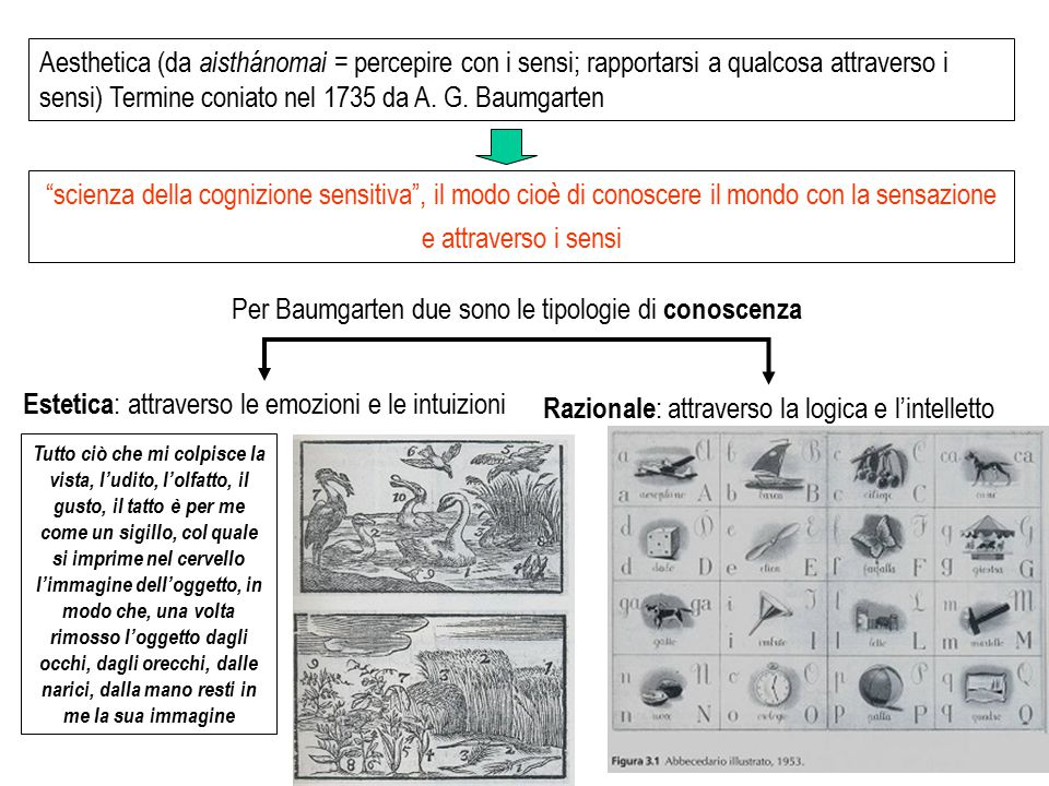 scienza della cognizione sensitiva , il modo cioè di conoscere il mondo con la sensazione e attraverso i sensi Aesthetica (da aisthánomai = percepire con i sensi; rapportarsi a qualcosa attraverso i sensi) Termine coniato nel 1735 da A.