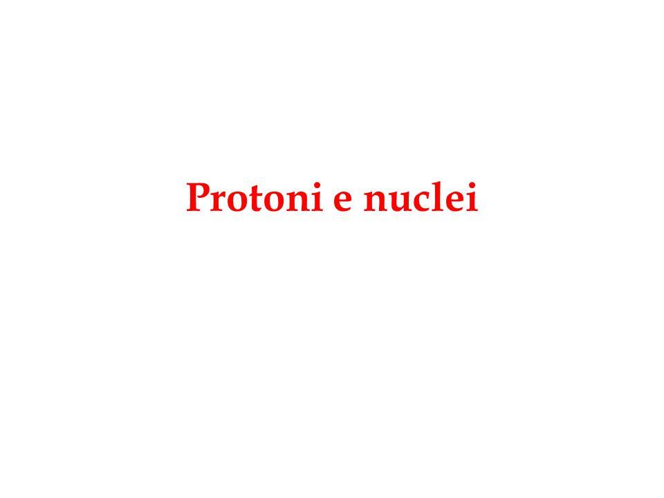 Protoni e nuclei