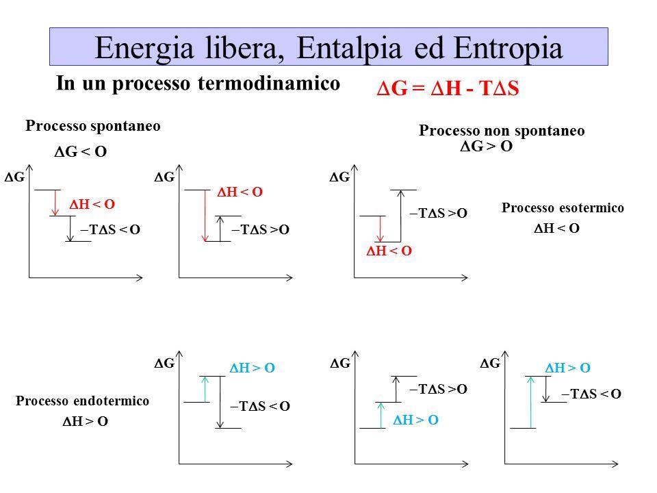 Energia libera, Entalpia ed Entropia  G =  H - T  S  G < O  G > O Processo spontaneo Processo non spontaneo In un processo termodinamico  < O 