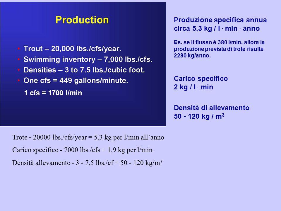 1 cfs = 1700 l/min Produzione specifica annua circa 5,3 kg / l. min. anno Es. se il flusso è 380 l/min, allora la produzione prevista di trote risulta