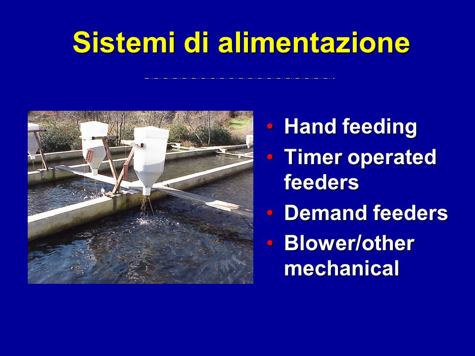 Sistemi di alimentazione Hand feedingHand feeding Timer operated feedersTimer operated feeders Demand feedersDemand feeders Blower/other mechanicalBlower/other mechanical