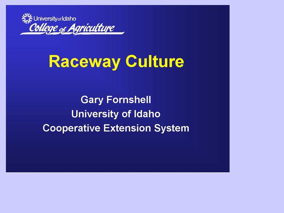 Sistemi raceway innovativi Raceway ellittica , con flusso idrico in serie e carico e scarico dell'acqua dallo stesso lato.