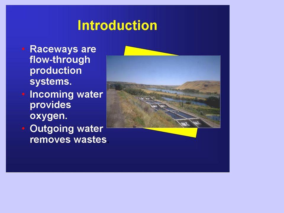 Flusso idrico Vivaio – 200 to 400 l/m minimoVivaio – 200 to 400 l/m minimo in funzione dell'allevamento da rifornire  in funzione dell'allevamento da rifornire  la minima fornitura di uova determina il minimo flusso d'acqua richiesto Allevamento – 5 - 9 kg p.v.
