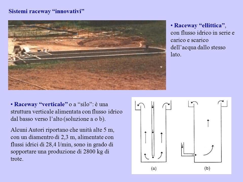 """Sistemi raceway """"innovativi"""" Raceway """"ellittica"""", con flusso idrico in serie e carico e scarico dell'acqua dallo stesso lato. Raceway """"verticale"""" o a"""