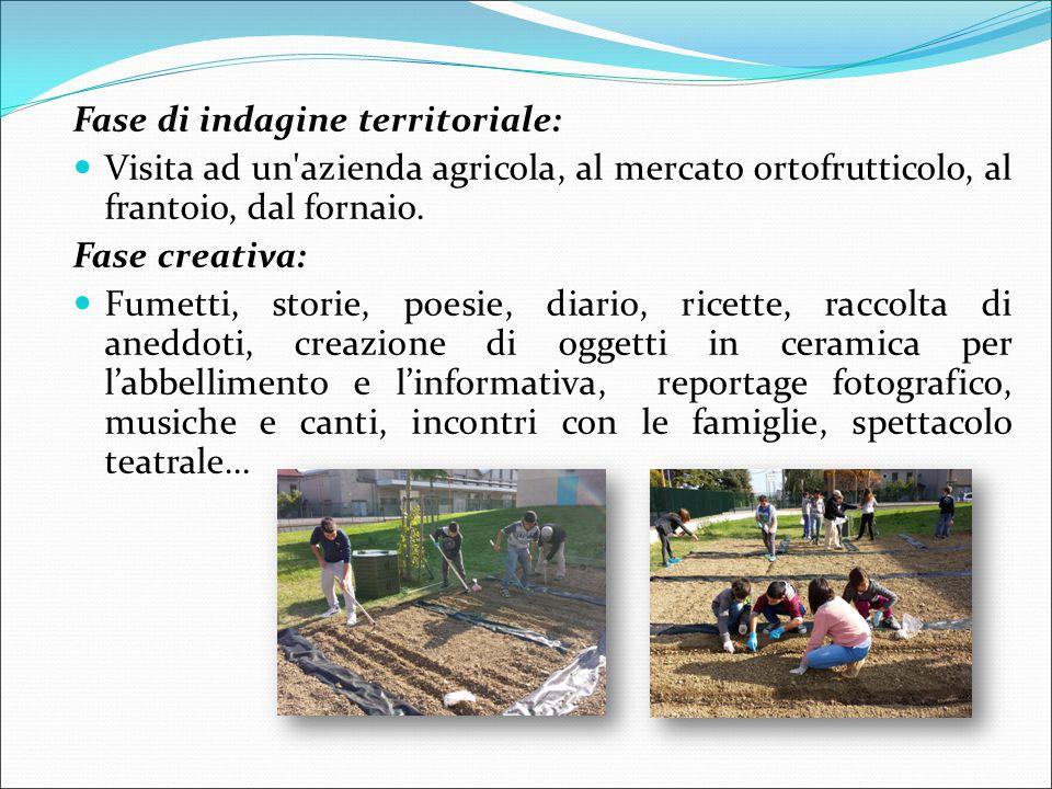 Fase di indagine territoriale: Visita ad un azienda agricola, al mercato ortofrutticolo, al frantoio, dal fornaio.