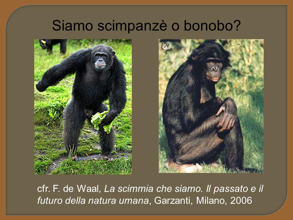 Siamo scimpanzè o bonobo? cfr. F. de Waal, La scimmia che siamo. Il passato e il futuro della natura umana, Garzanti, Milano, 2006